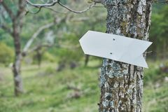 Flèche de direction dans la forêt - ajoute votre texte ici photographie stock libre de droits