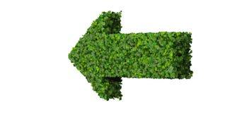 Flèche faite à partir des feuilles vertes 3d rendent Images stock