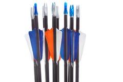 Flèches avec fletching et nocks Image libre de droits