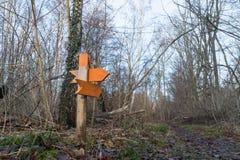 Flèches en bois colorées dans une forêt Images libres de droits