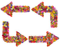 Flèches florales réglées Photos stock