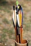 Flèches toutes neuves dans le tremblement Photographie stock libre de droits