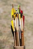 Flèches toutes neuves dans le tremblement Photos stock
