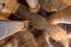 Fléaux de Magnificient dans le temple de Khnum, Egypte Image stock