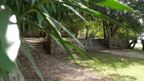 Fléaux du grec ancien Parc de Milocer de territoire, près de Sveti Stefan banque de vidéos