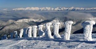 Fléaux figés dans la station de sports d'hiver Jasna - Slovaquie Photo libre de droits