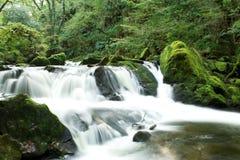 flöda för falls Royaltyfri Fotografi