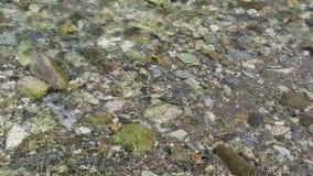 Flöda för Gerlos ström vaggar i jordning av floden lager videofilmer