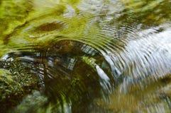 Flöda för vatten som slås vagga och skvalpas i floden Fotografering för Bildbyråer