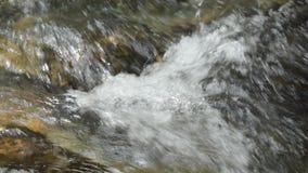 Flöda för vatten som slås vagga och vågen som plaskar i floden arkivfilmer
