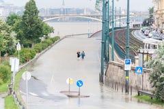 Flödad över Donau på Budapest royaltyfri fotografi