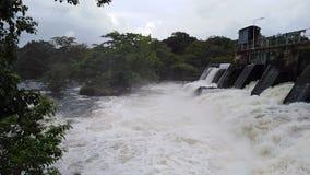 Flödande över vatten i enorma behållare i den Sri Lanka Nachaduuwa behållaren underbart ställelandskap lager videofilmer