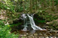 Flödande en fridfullt vattenfall i skogen arkivbild