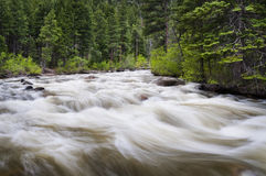 flödande flod Arkivbilder