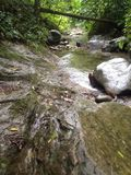 flödande flod Royaltyfri Foto