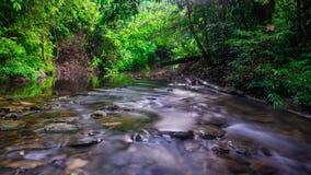 flödande flod royaltyfria bilder