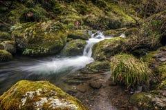 Flödande flod i Alva Glen Arkivfoto