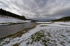 Flödande flod i snöig skog Arkivbilder