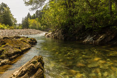 Flödande landskap för flod Arkivfoto