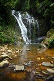 flödande rainforestvattenfall Royaltyfria Bilder