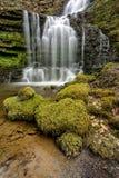 Flödande skogsmarkvattenfall Royaltyfri Foto