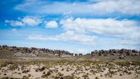 Flödande ström för hög höjd i hårt kargt landskap med scenisk dramatisk himmel Bred vinkelsikt från ovannämnt på 4000 M på Andeae Royaltyfria Bilder