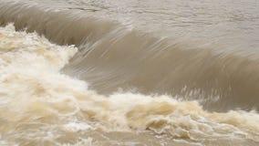 Flödande vatten stock video