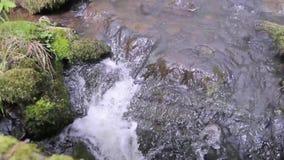Flödande vatten av en naturlig liten vik stock video