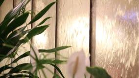 Flödande vatten på exponeringsglas och blommor arkivfilmer