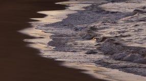 Flödande vatten på solnedgången Royaltyfria Bilder
