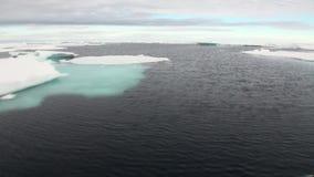 Is flödar i det arktiska havet lager videofilmer