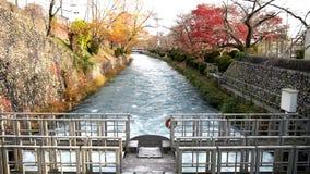 Flöde av Tamagawa Josui nära den Hamura intagdammbyggnaden arkivfilmer