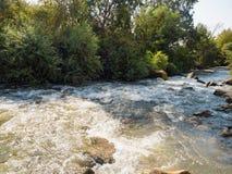 Flöde för högt vatten Royaltyfri Foto