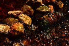 Flöden för skogströmvatten runt om en stenbarriär arkivfoto