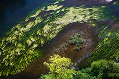 flödesflod Royaltyfria Foton