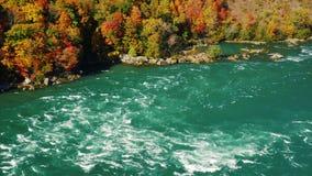 Flödet av de flodNiagara forsarna Mot bakgrunden av den färgrika höstskogen delar floden USA och lager videofilmer