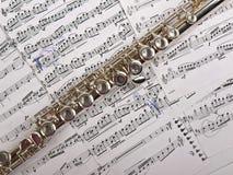 flöjt Arkivbild