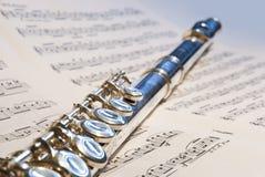 Flöjten instrumenterar på noterar Royaltyfri Bild