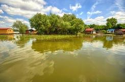 Flösse und Baum auf einem grünen See Lizenzfreie Stockfotos