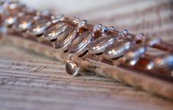 Flöte auf Musik Stockbild