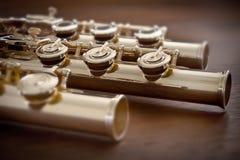 Flöte/Fuß Verbindungs- Stockfotos