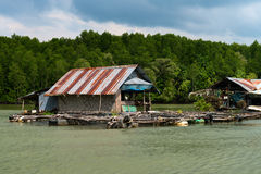 Flötefiskeläge på den tropiska floden Arkivbilder