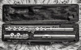 Flöteninstrument lizenzfreie stockbilder
