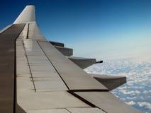 Flügel Stockfotografie