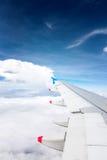 Flügel eines Flugzeugflugwesens Stockbilder