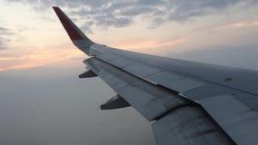 Flügel im Himmel 2 stock video