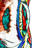 Flüssige Farbe des abstrakten Hintergrundes über dem Eis, geräuchert Stockfotografie
