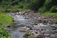 Flüssiger Fluss Stockbilder