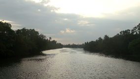 Flüssiger Fluss bei Sonnenuntergang in Sri Lanka stock video