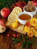 Flüssiger Honig in einer kleinen Schüssel umgeben durch Scheiben der Zitrone, der Äpfel, der Ebereschenbeeren und der Blumen Stockfotografie